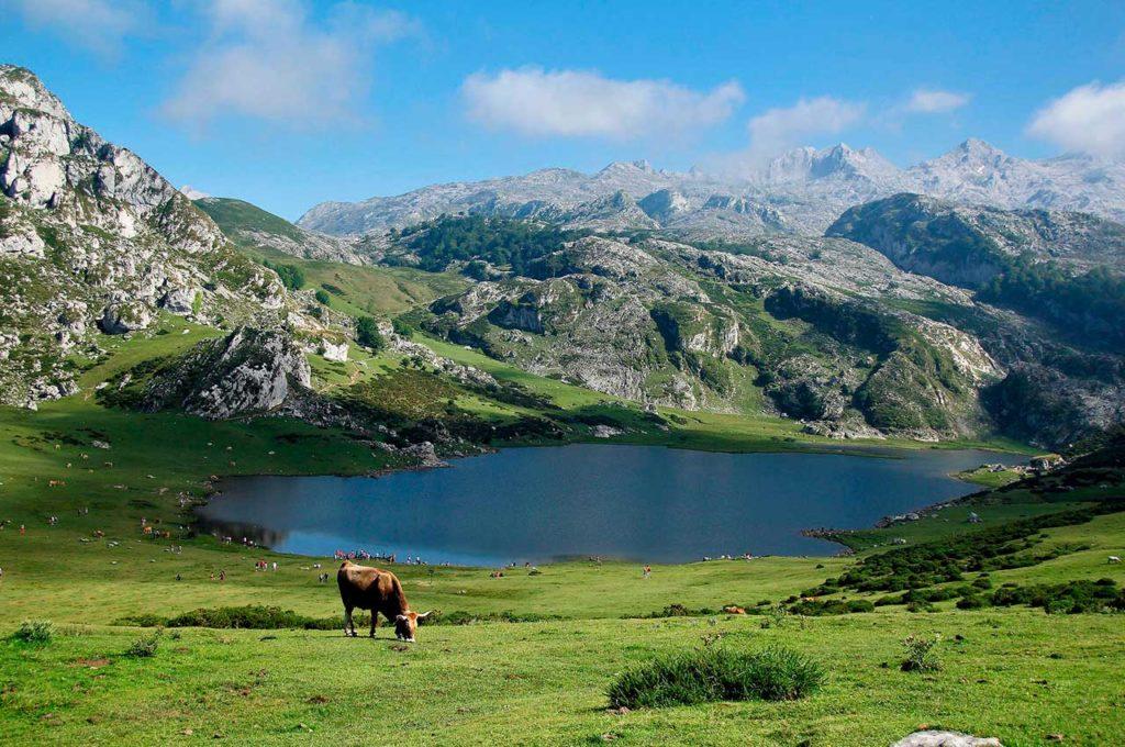 Caravan routes to discover Asturias